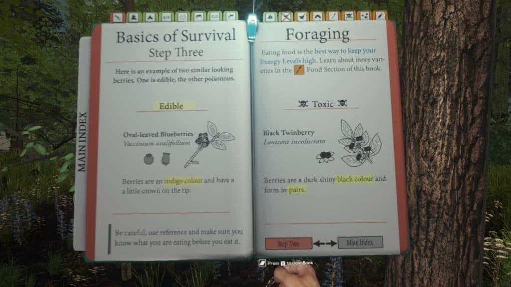 The Forest Survivalbook Berrys
