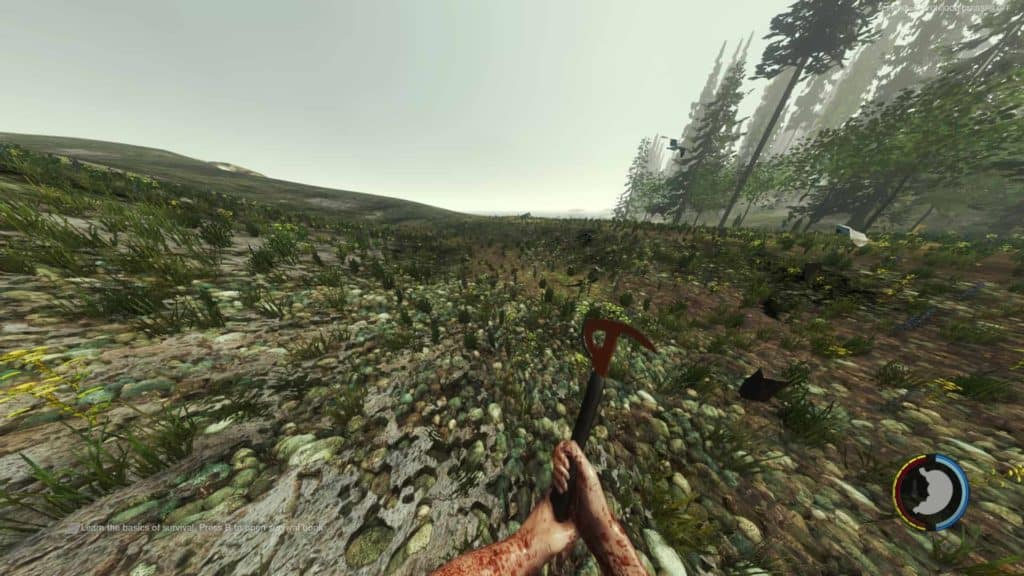 The Forest - extreme FOV ( Field of View). DayZ Sicht dank Rebalanced Mod.