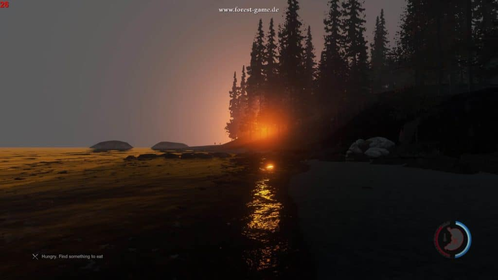 The Forest - Sonnenaufgang