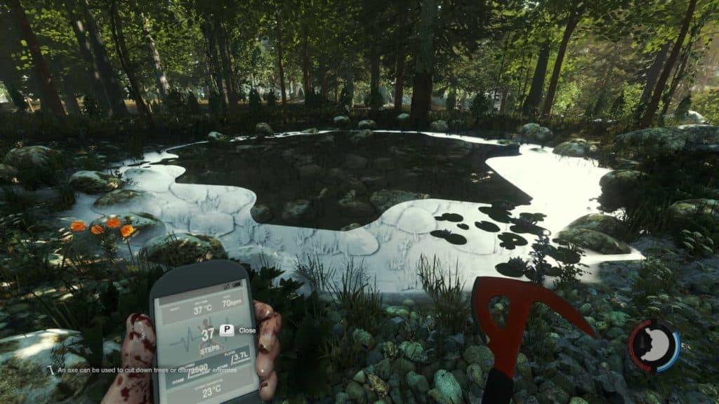 The Forest - Wasser mit einer besseren Oberflächenreflexion