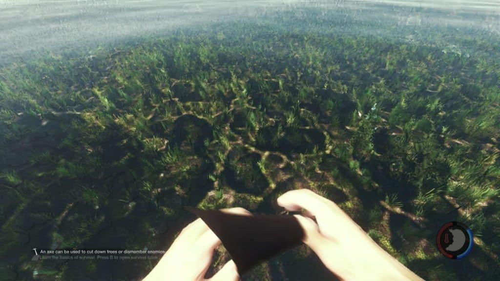 The Forest 0.06 - auch unter dem Wasser sieht es wieder angenehmer aus.