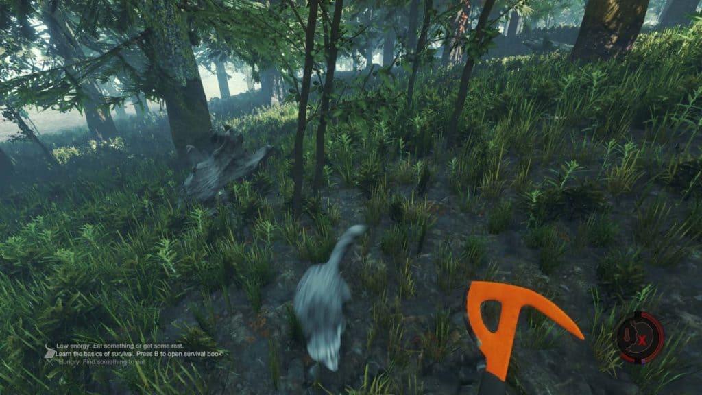 The Forest Version 0.07 - Waschbär auf der Flucht