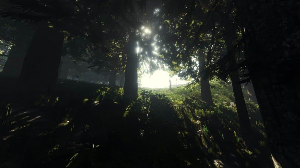 The Forest überzeugt mit einer atemberaubenden (Global Illumination) Globalen Beleuchtung. Es sieht wunderschön aus, wenn das Licht durch die Blätter scheint.