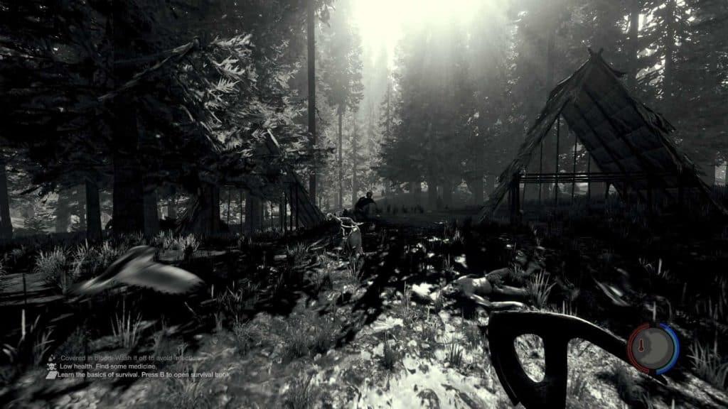 The Forest - Auch in Schwarz Weiß wunderschön anzusehen