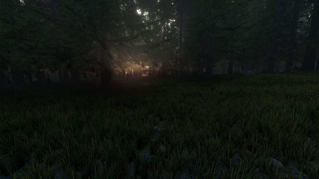 The Forest 0.11. Höchste Grasdichste, höchste Grafikeinstellungen. Sonnenaufgang.
