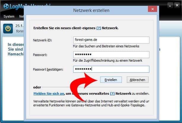 Bild 4: Die Netzwerkdaten eingeben